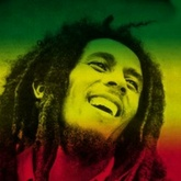 Bob Marley - Could You Be Loved (TJR refix)