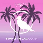 Pump Up The Jam (MÖWE Cover)