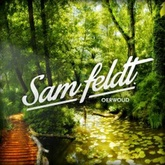 Sam Feldt - Oerwoud (Mixtape)