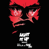 Light It Up (Remix)