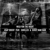 Wild For The Night - A$AP Rocky feat. Skrillex and Birdy Nam Nam