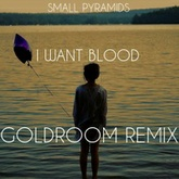 Small Pyramids - I Want Blood (Goldroom Remix)