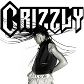 Whip My Hair (Crizzly Remix) *CLICK BUY THIS TRACK FOR FREE DL*