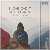 Nobody Knows ft. WYNNE (COFRESI Remix)