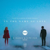Martin Garrix & Bebe Rexha - In the Name of Love (D-Block & S-te-Fan rmx)