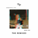 Need You (B-Sides Remix)