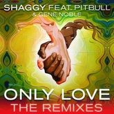 Only Love (Bad Royale Remix)