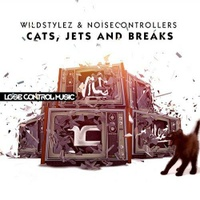Cats, Jets and Breaks