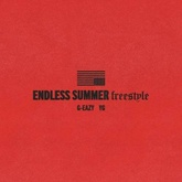 Endless Summer Freestyle
