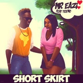 Short Skirt (feat. Tekno)