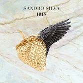 SANDRO SILVA - IRIS (FREE DOWNLOAD)