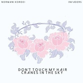 Solange - Don't Touch My Hair x Cranes in the Sky (Normani Kordei Mashup Cover)