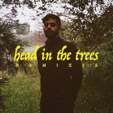 Head In The Trees (metsa Remix)