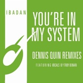 You're In My System
