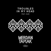 Troubles In My Head featuring Siam