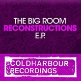 Absolute Reality [Markus Schulz Big Room Reconstruction]