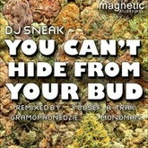 U Can't Hide From Your Bud