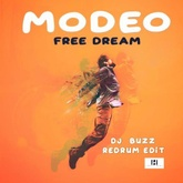 Free Dream (DJBuzz Redrum Edit)