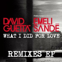 What I Did For Love Feat Emeli Sandé