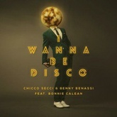 I Wanna Be Disco
